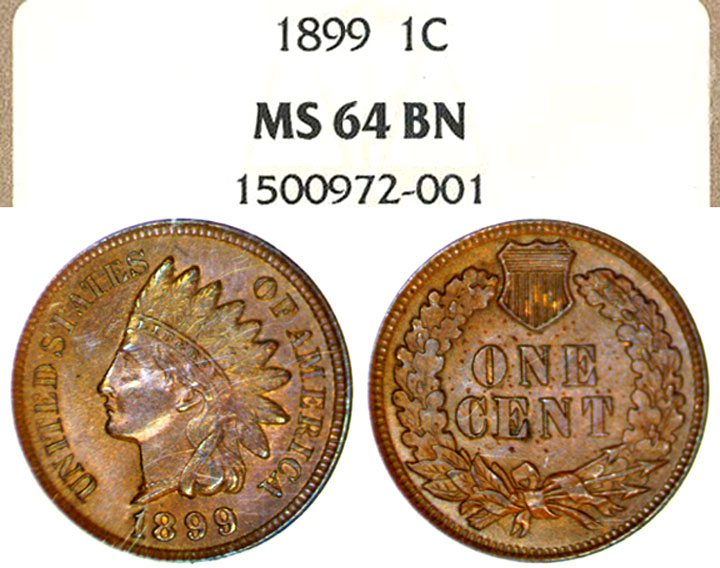 1899 1c US Indian Head Cent NGC MS-64