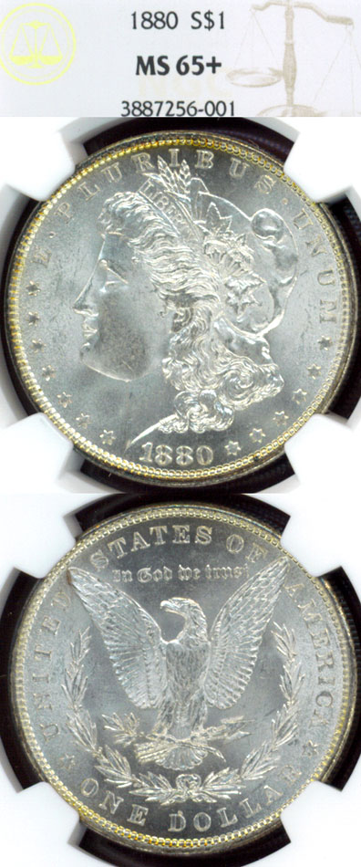 1880 $ US Morgan silver dollar NGC MS-65+